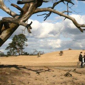 Stichting het Nationale park De Hoge Veluwe